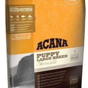 acana-puppy-large