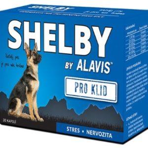 alavis-shelby-klid