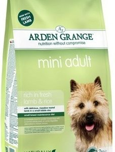 arden_adult_mini_lamb