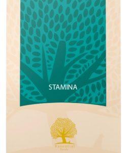 essential-stamina