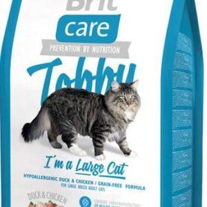 britcare-cat-tobby-large