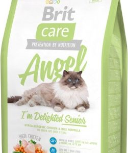 britcare_cat_angel_senior