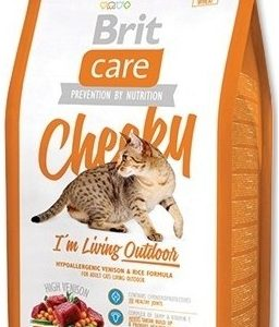 britcare_cat_cheeky_outdoor