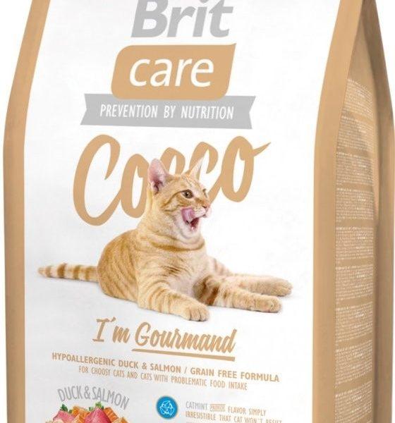 britcare_cat_cocco_gourmand