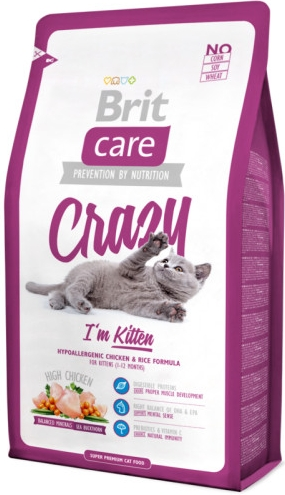 britcare_cat_crazy_kitten