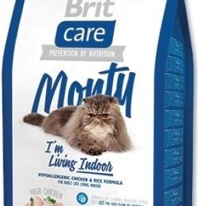 britcare_cat_monty_indoor