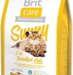 britcare_cat_sunny_hair